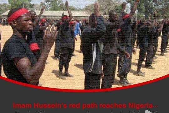 Imam Hussein's red path reaches Nigeria ...